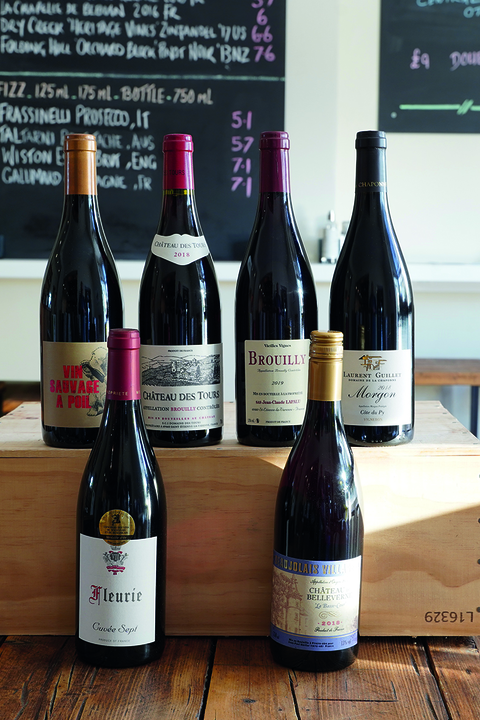 mixed 6 beaujolais wines
