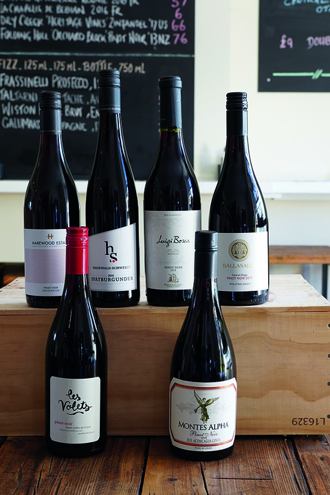 mixed 6 pinot noir bottles
