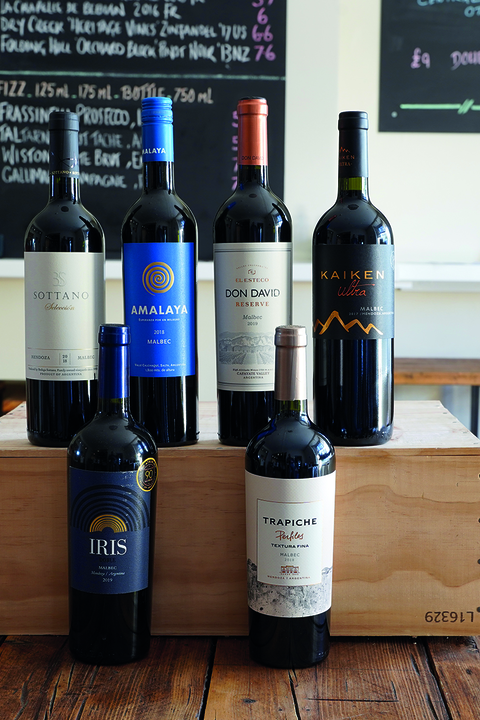 argentinean malbec mixed case